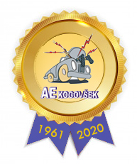 AE Kogovsek_2020_k